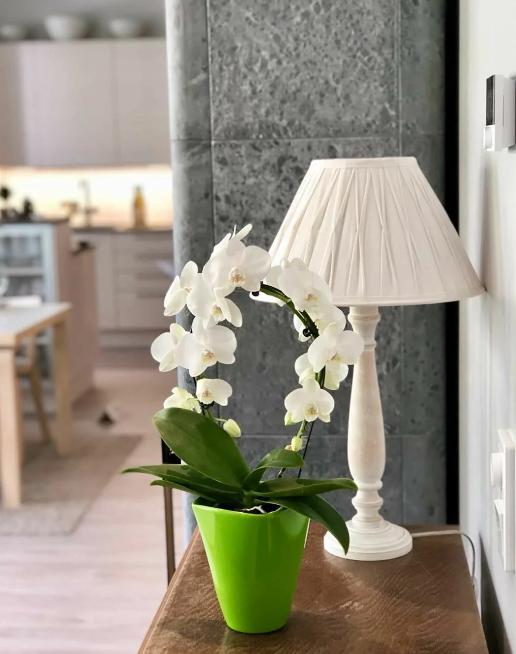 Светильник и орхидея на фоне камина